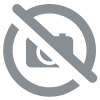 Biscuits nature (120G)